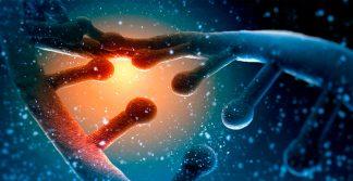 foto da Ciência da Vida e a sua importância